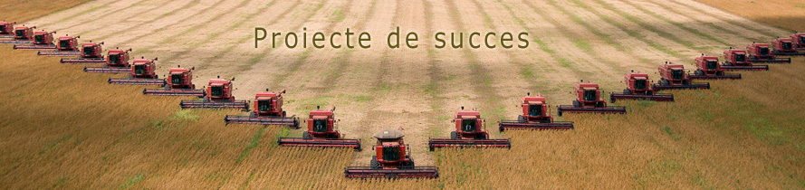 Proiecte de succes